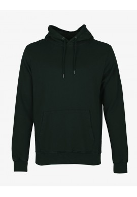 Hoody Colorful Standard hunter green