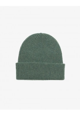 Beanie Colorful Standard emerald green